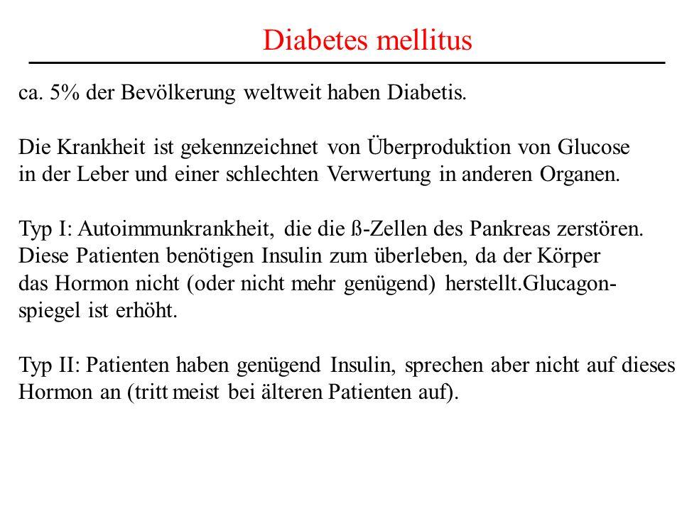 Diabetes mellitus ca. 5% der Bevölkerung weltweit haben Diabetis.