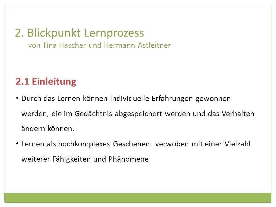 2. Blickpunkt Lernprozess von Tina Hascher und Hermann Astleitner