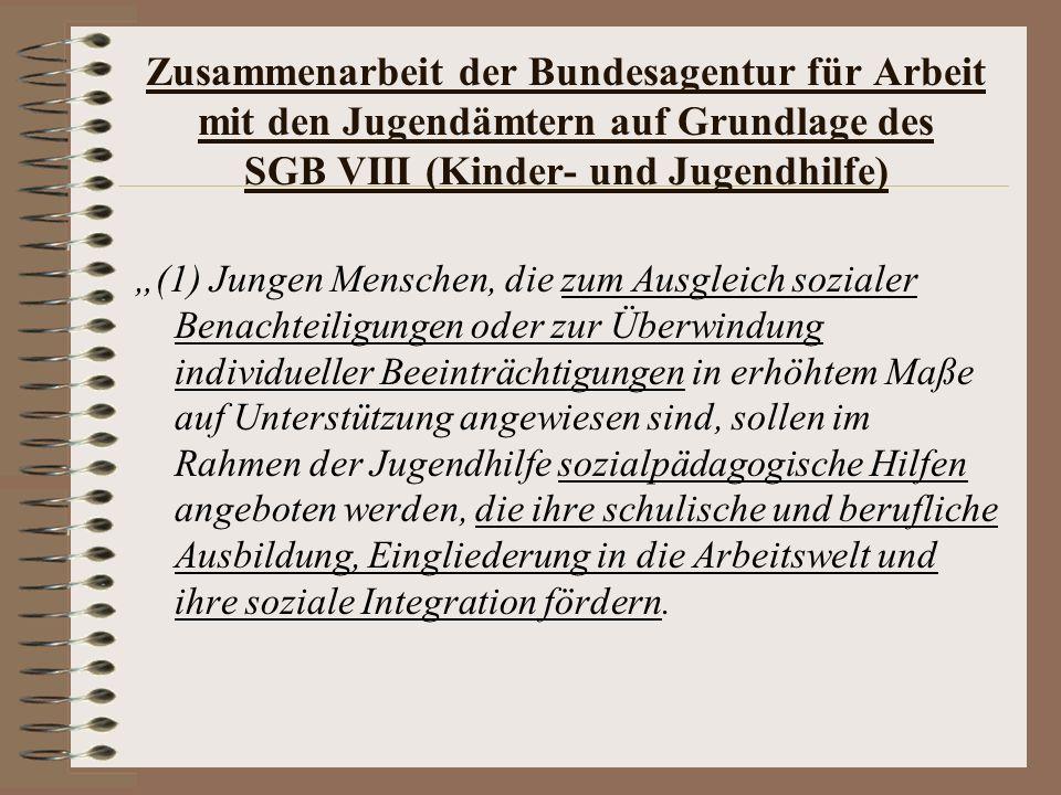 Zusammenarbeit der Bundesagentur für Arbeit mit den Jugendämtern auf Grundlage des SGB VIII (Kinder- und Jugendhilfe)