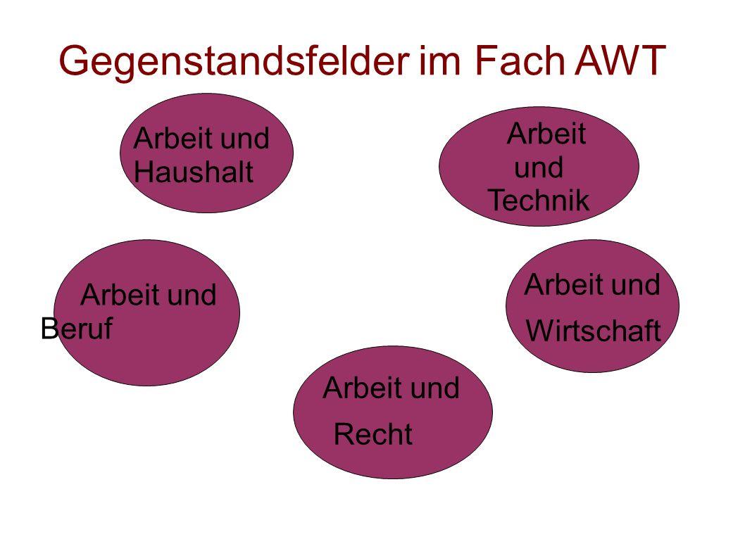 Gegenstandsfelder im Fach AWT