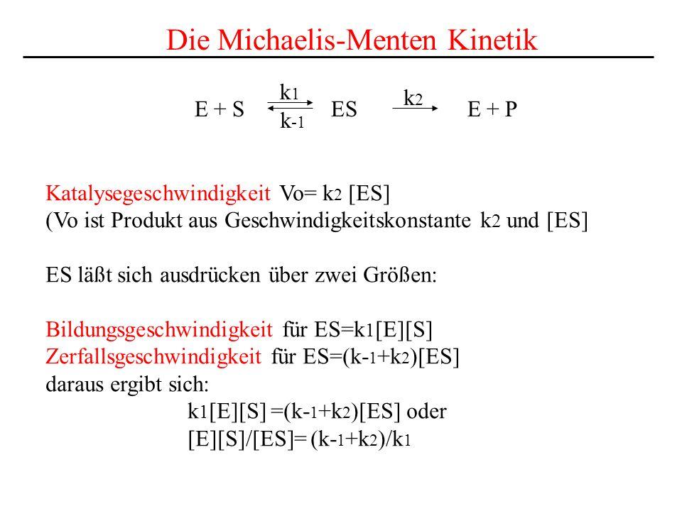 Die Michaelis-Menten Kinetik
