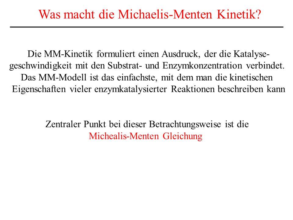 Was macht die Michaelis-Menten Kinetik
