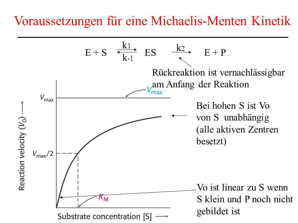 Voraussetzungen für eine Michaelis-Menten Kinetik
