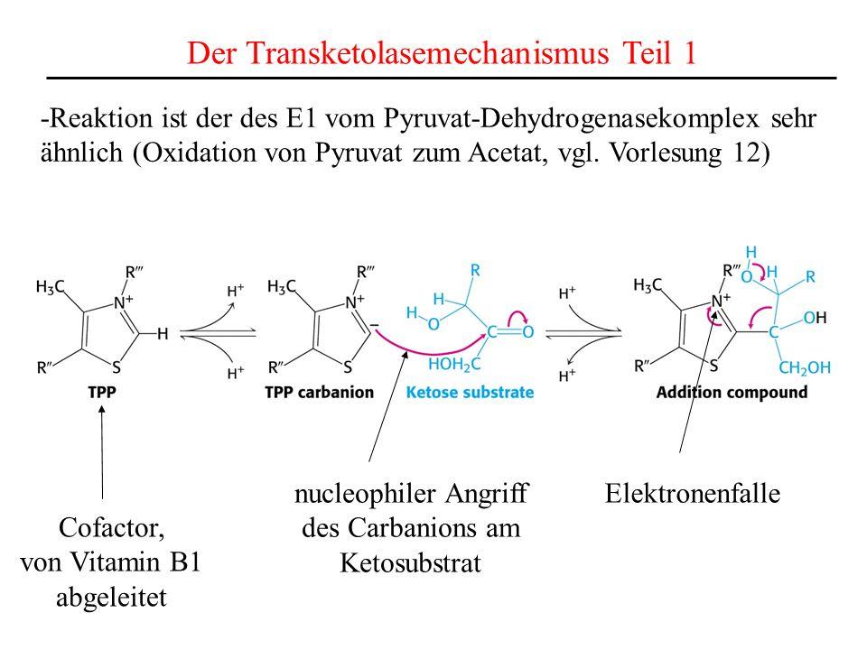Der Transketolasemechanismus Teil 1