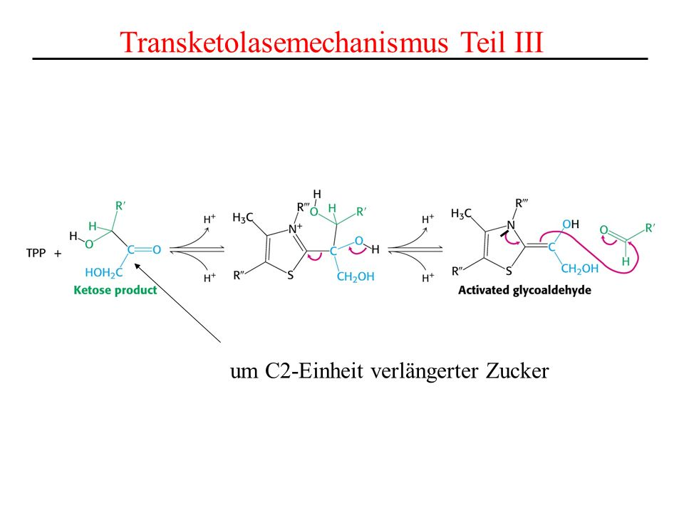 Transketolasemechanismus Teil III