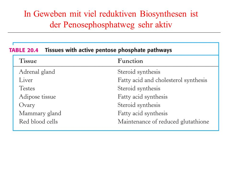 In Geweben mit viel reduktiven Biosynthesen ist