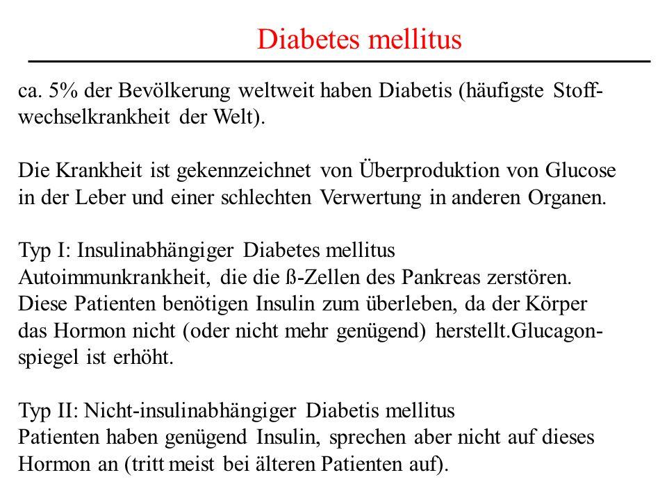 Diabetes mellitus ca. 5% der Bevölkerung weltweit haben Diabetis (häufigste Stoff- wechselkrankheit der Welt).