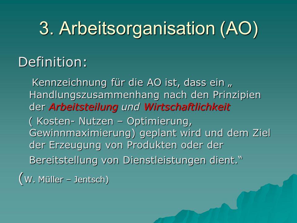 3. Arbeitsorganisation (AO)