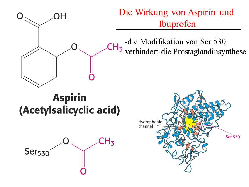 Die Wirkung von Aspirin und