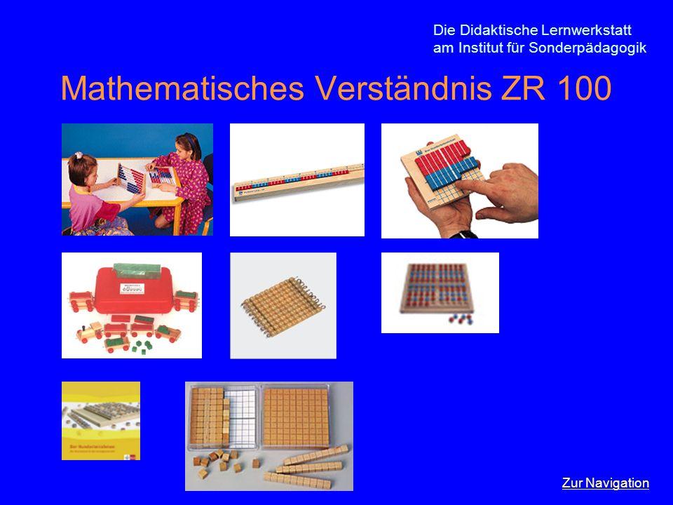 Mathematisches Verständnis ZR 100