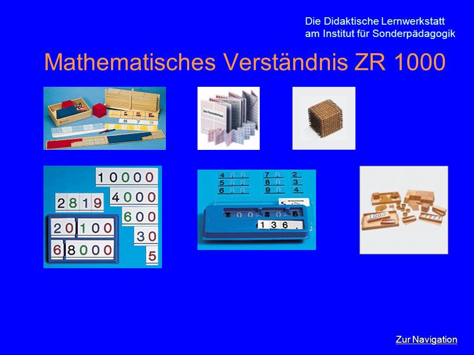 Mathematisches Verständnis ZR 1000