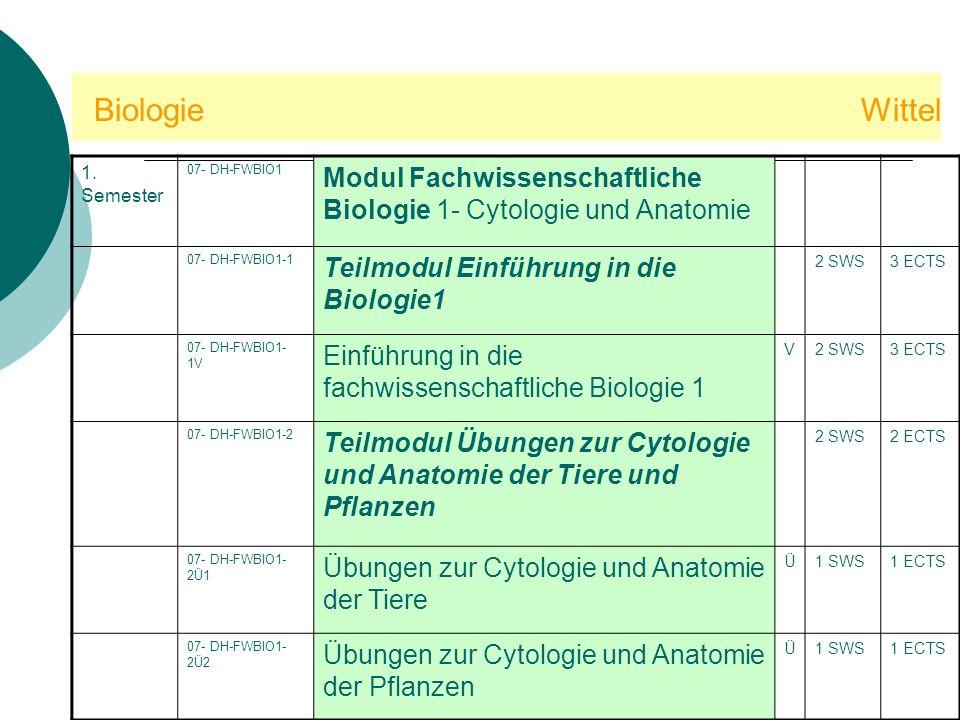 Biologie Wittel 1. Semester. 07- DH-FWBIO1.