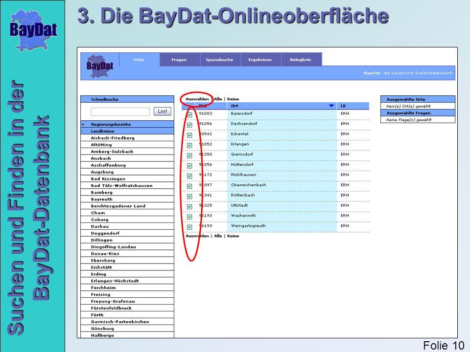 3. Die BayDat-Onlineoberfläche