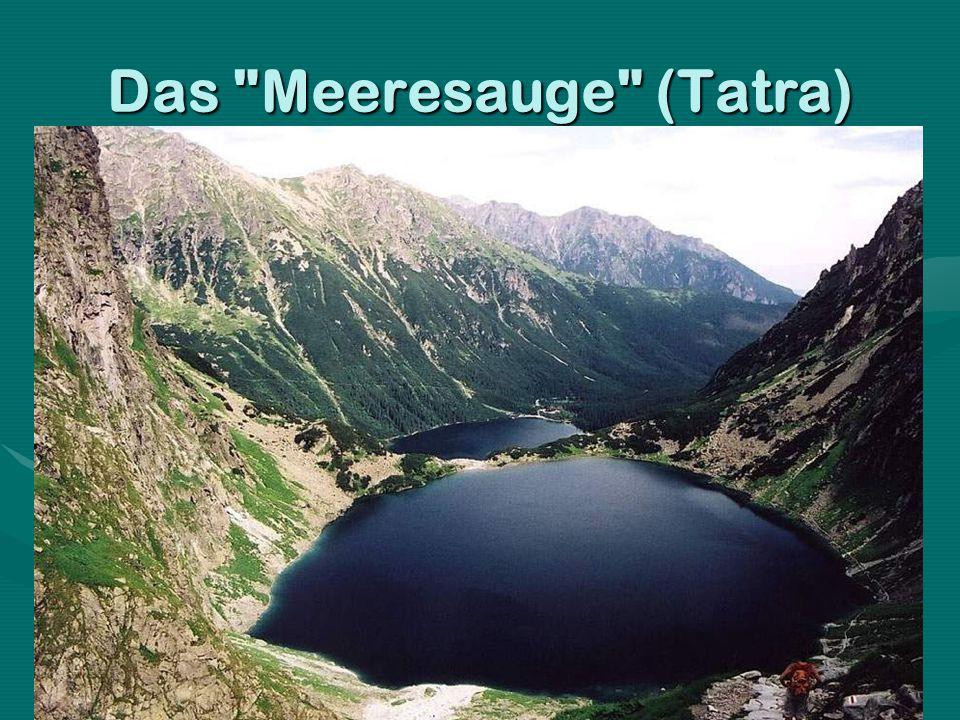 Das Meeresauge (Tatra)