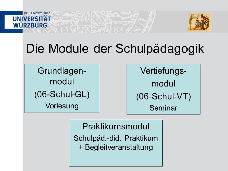 Die Module der Schulpädagogik