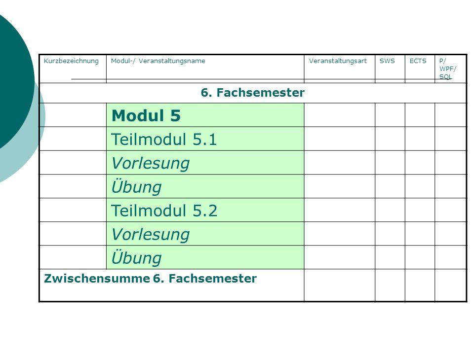 Modul 5 Teilmodul 5.1 Vorlesung Übung Teilmodul 5.2 6. Fachsemester