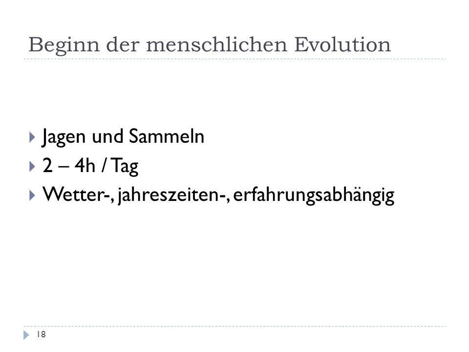 Beginn der menschlichen Evolution