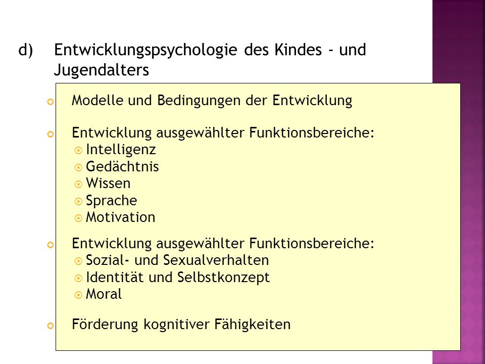 d) Entwicklungspsychologie des Kindes - und Jugendalters