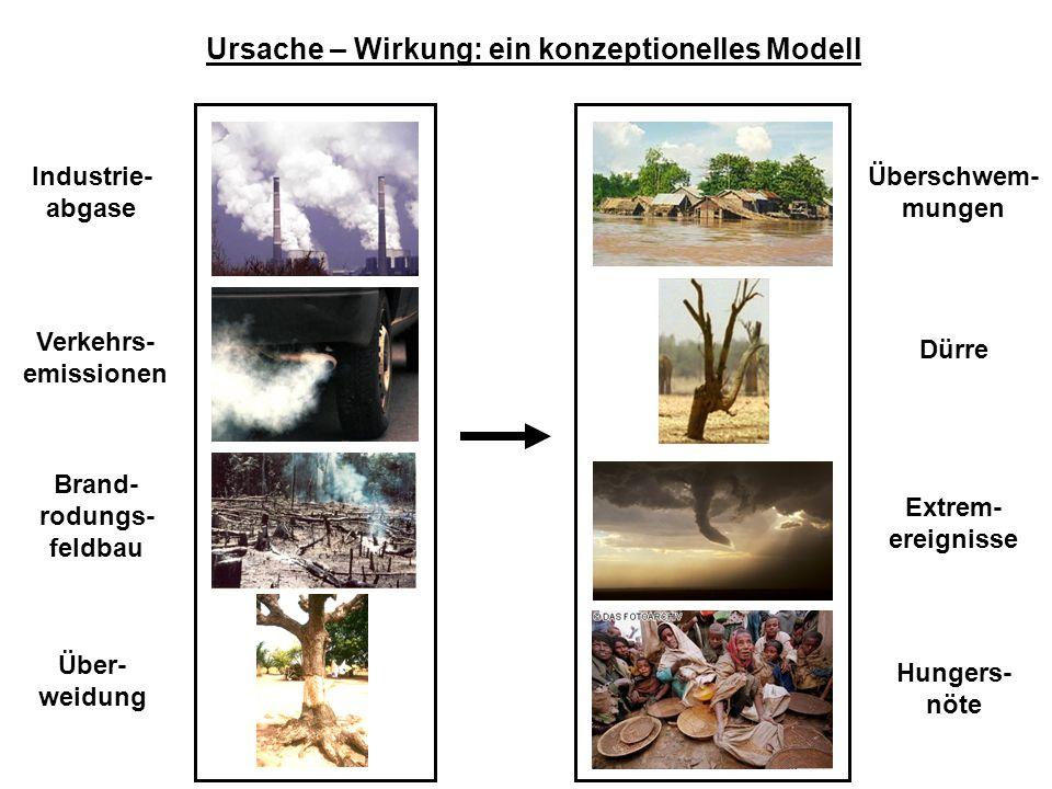 Ursache – Wirkung: ein konzeptionelles Modell