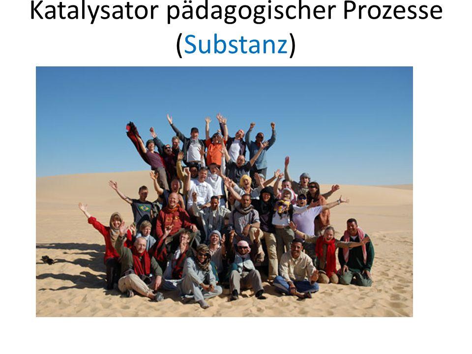 Katalysator pädagogischer Prozesse (Substanz)