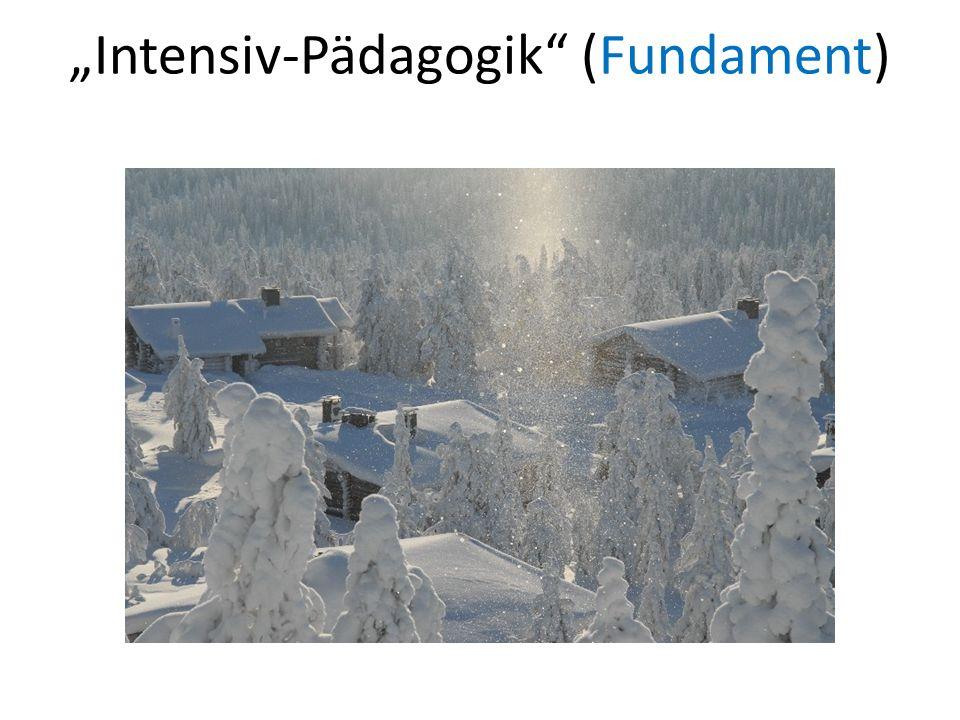 """""""Intensiv-Pädagogik (Fundament)"""