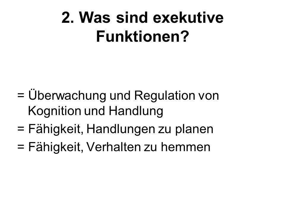 2. Was sind exekutive Funktionen