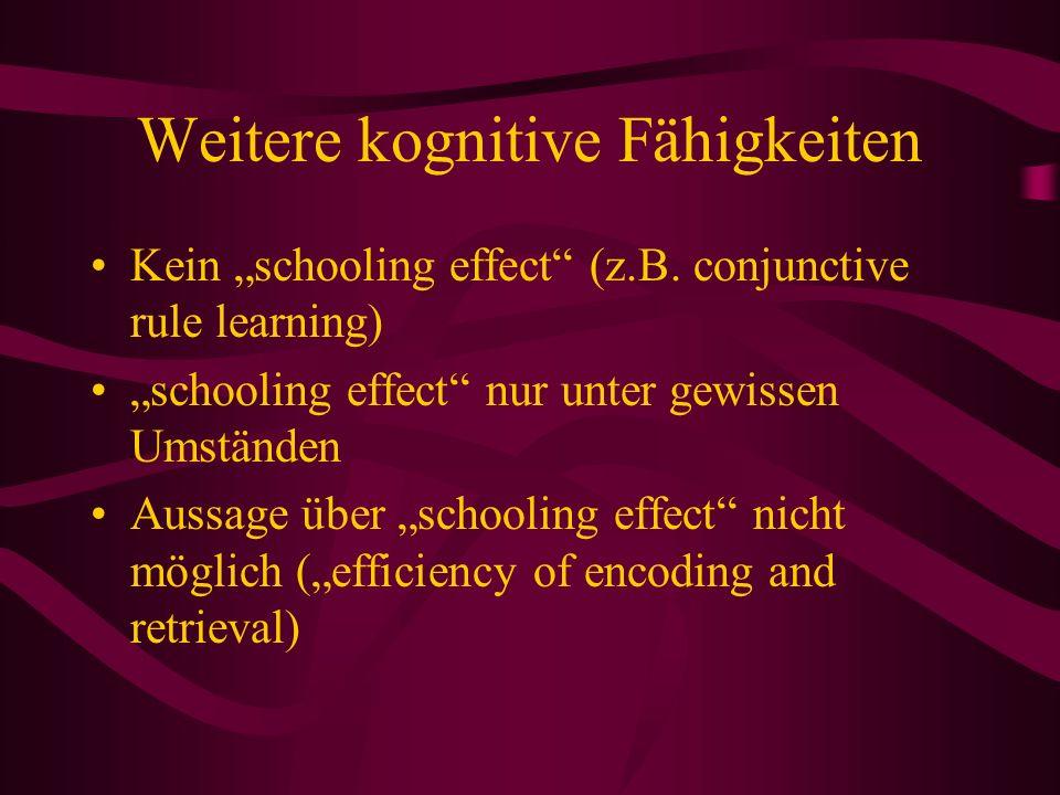 Weitere kognitive Fähigkeiten