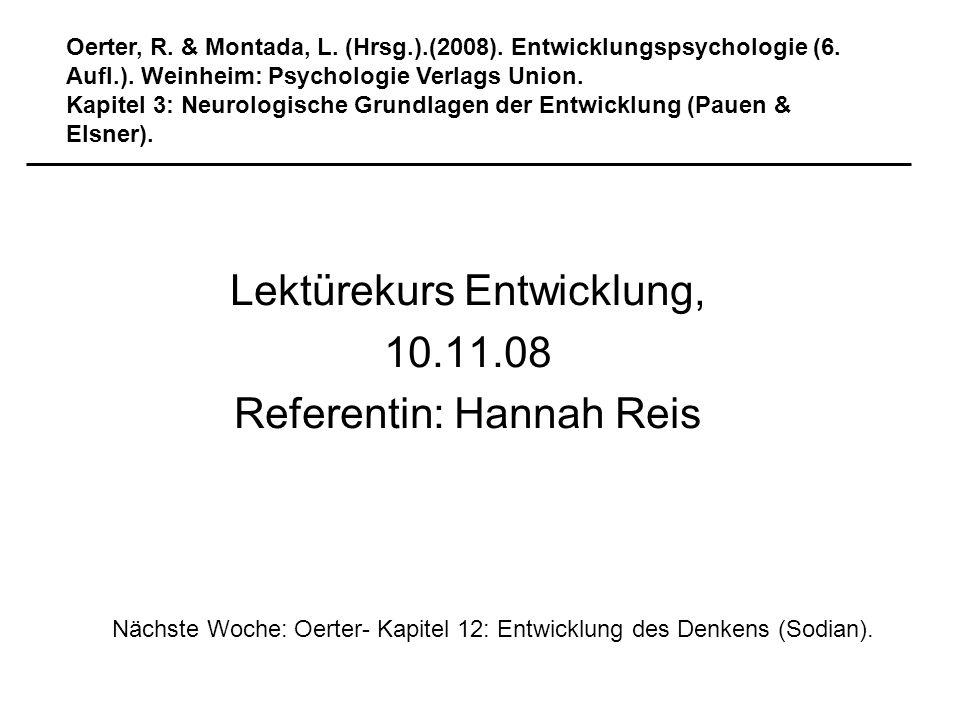 Lektürekurs Entwicklung, 10.11.08 Referentin: Hannah Reis