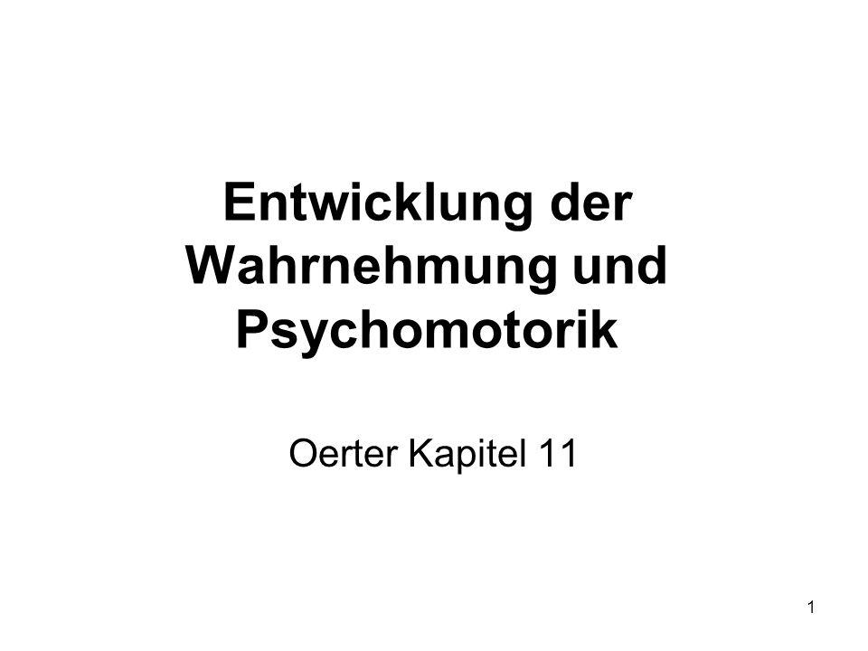 Entwicklung der Wahrnehmung und Psychomotorik