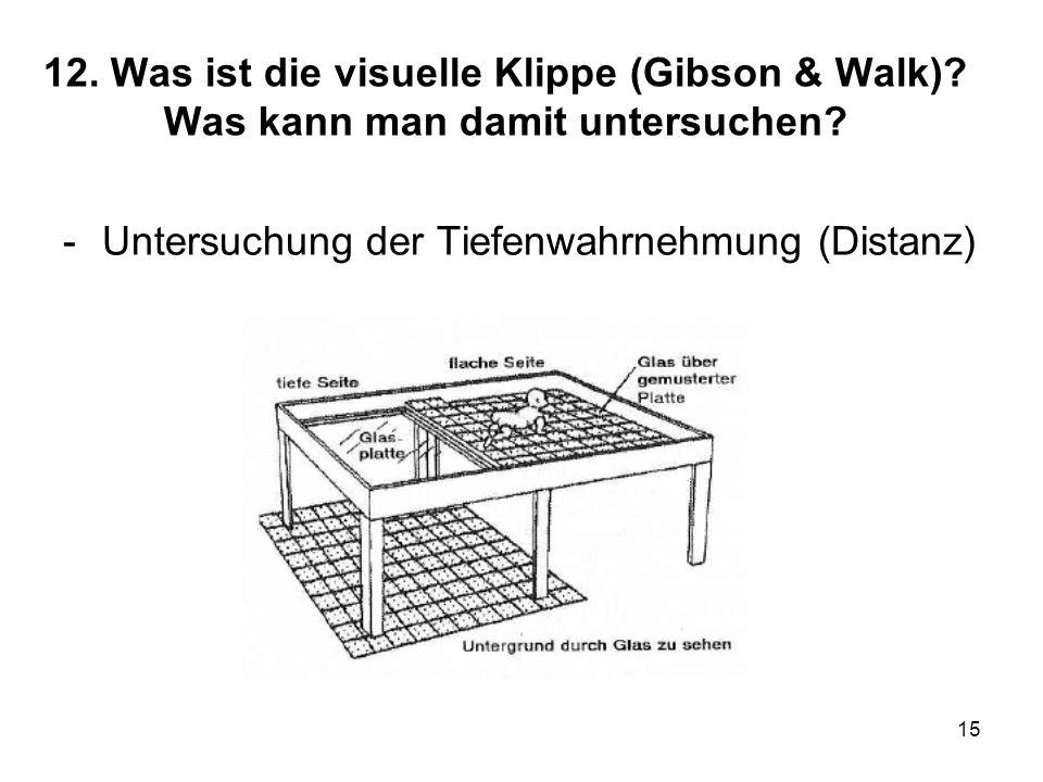 12. Was ist die visuelle Klippe (Gibson & Walk)