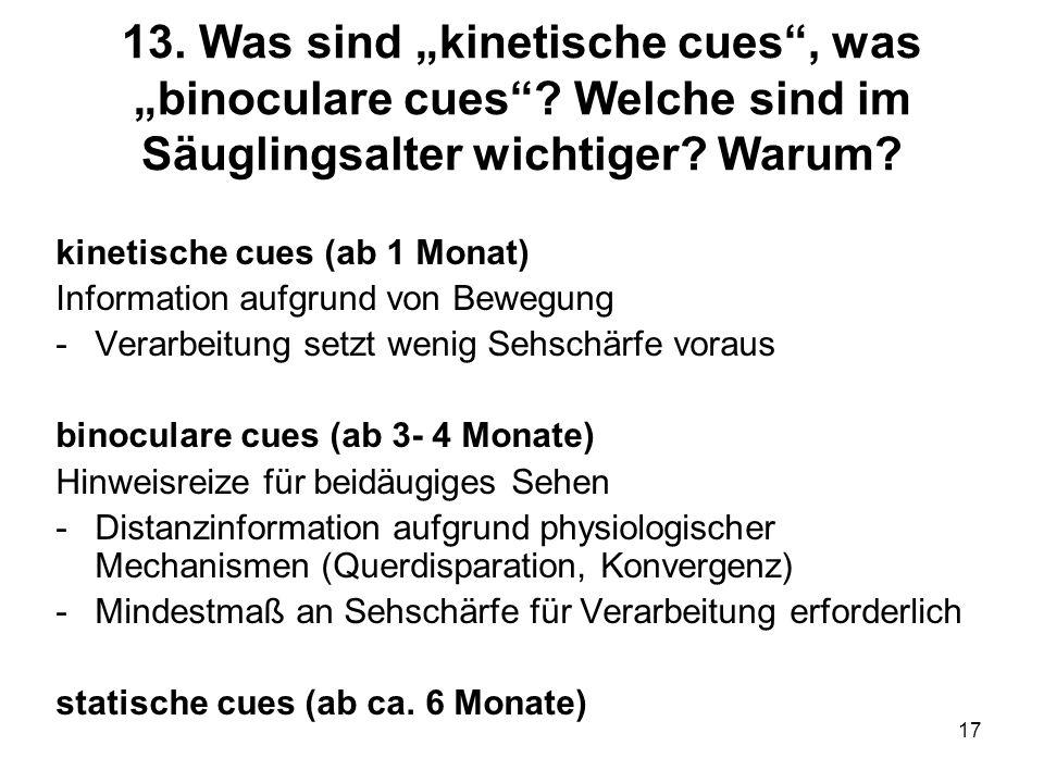 "13. Was sind ""kinetische cues , was ""binoculare cues"