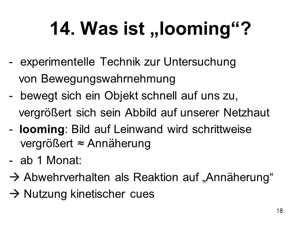 "14. Was ist ""looming experimentelle Technik zur Untersuchung"