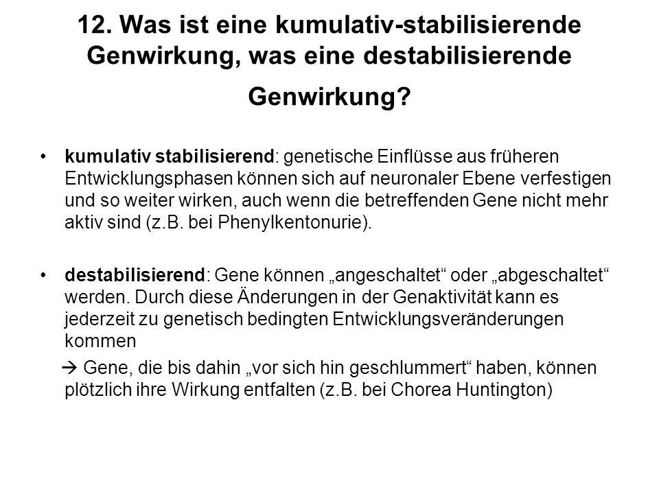 12. Was ist eine kumulativ-stabilisierende Genwirkung, was eine destabilisierende Genwirkung