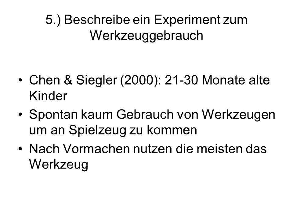 5.) Beschreibe ein Experiment zum Werkzeuggebrauch