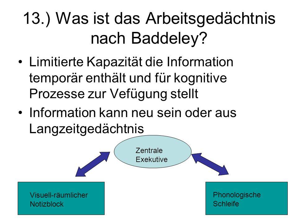 13.) Was ist das Arbeitsgedächtnis nach Baddeley