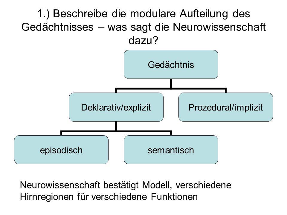 1.) Beschreibe die modulare Aufteilung des Gedächtnisses – was sagt die Neurowissenschaft dazu