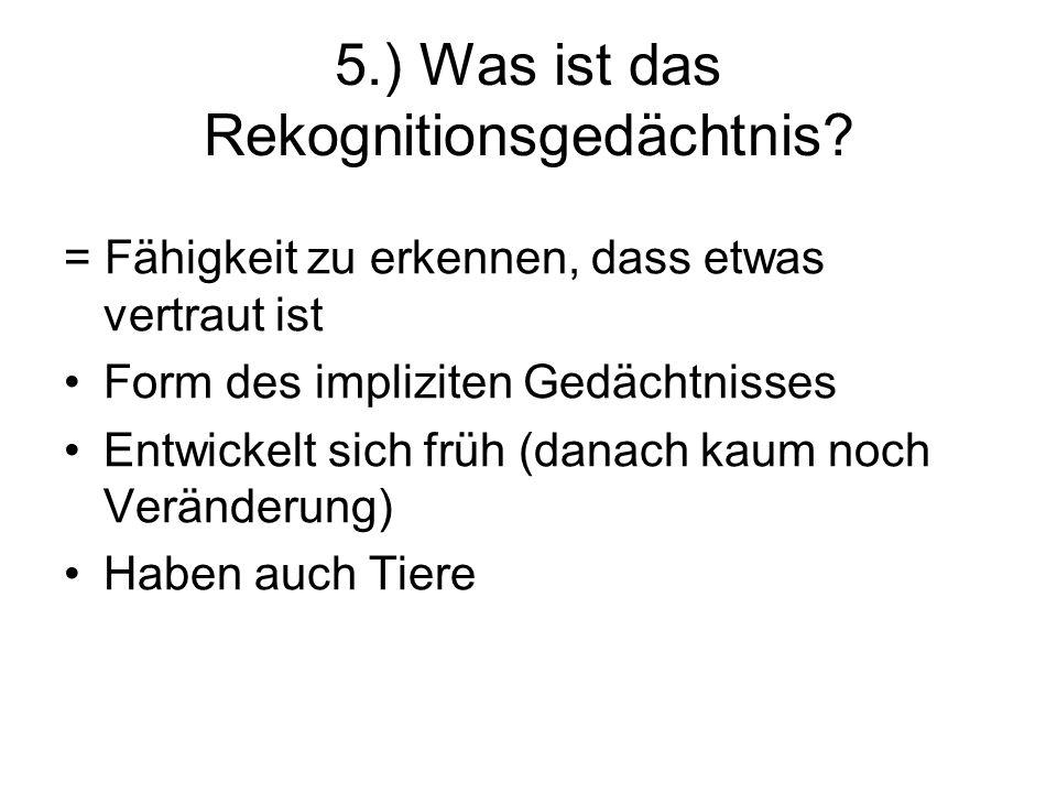 5.) Was ist das Rekognitionsgedächtnis