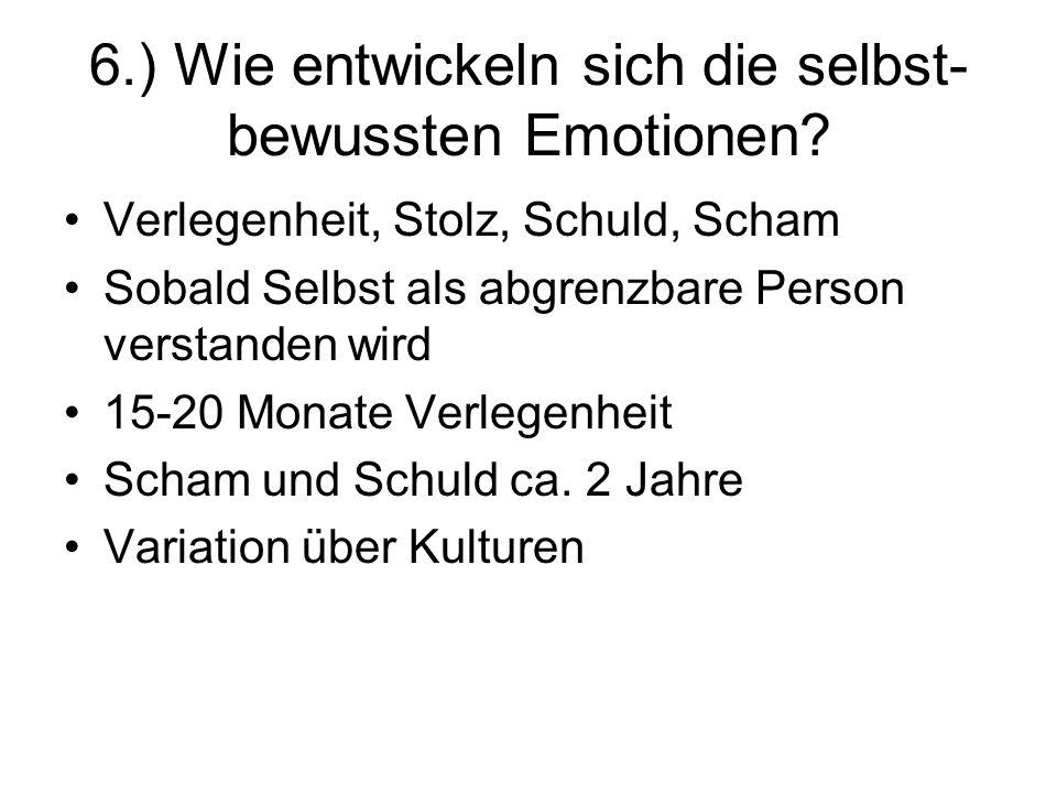 6.) Wie entwickeln sich die selbst-bewussten Emotionen
