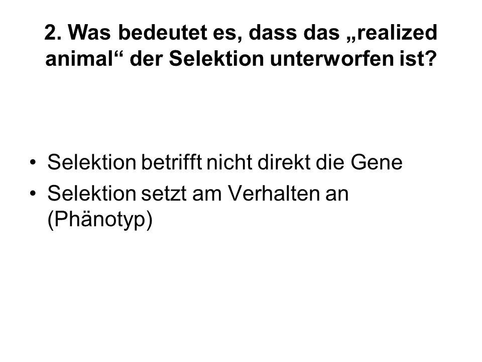 """2. Was bedeutet es, dass das """"realized animal der Selektion unterworfen ist"""