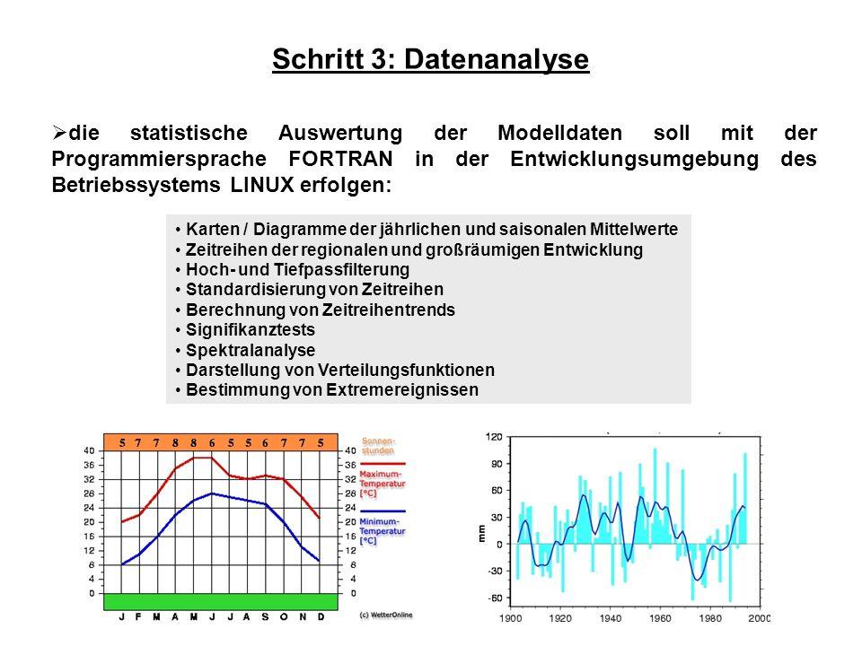 Schritt 3: Datenanalyse