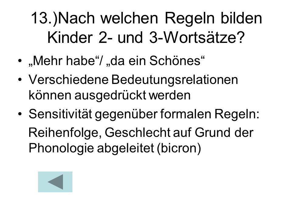 13.)Nach welchen Regeln bilden Kinder 2- und 3-Wortsätze