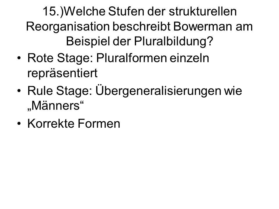 15.)Welche Stufen der strukturellen Reorganisation beschreibt Bowerman am Beispiel der Pluralbildung