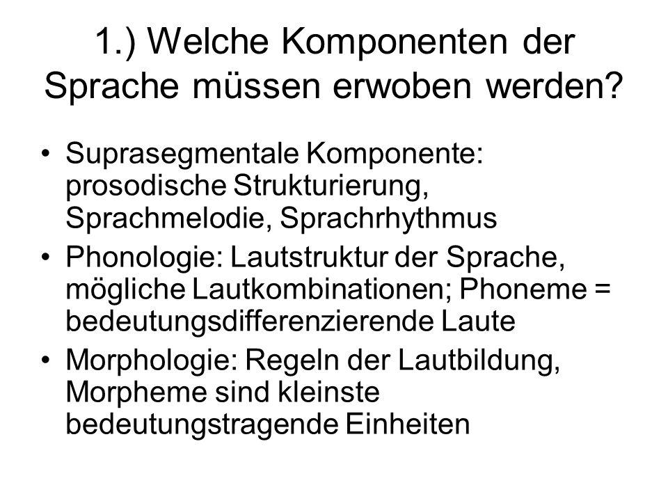 1.) Welche Komponenten der Sprache müssen erwoben werden