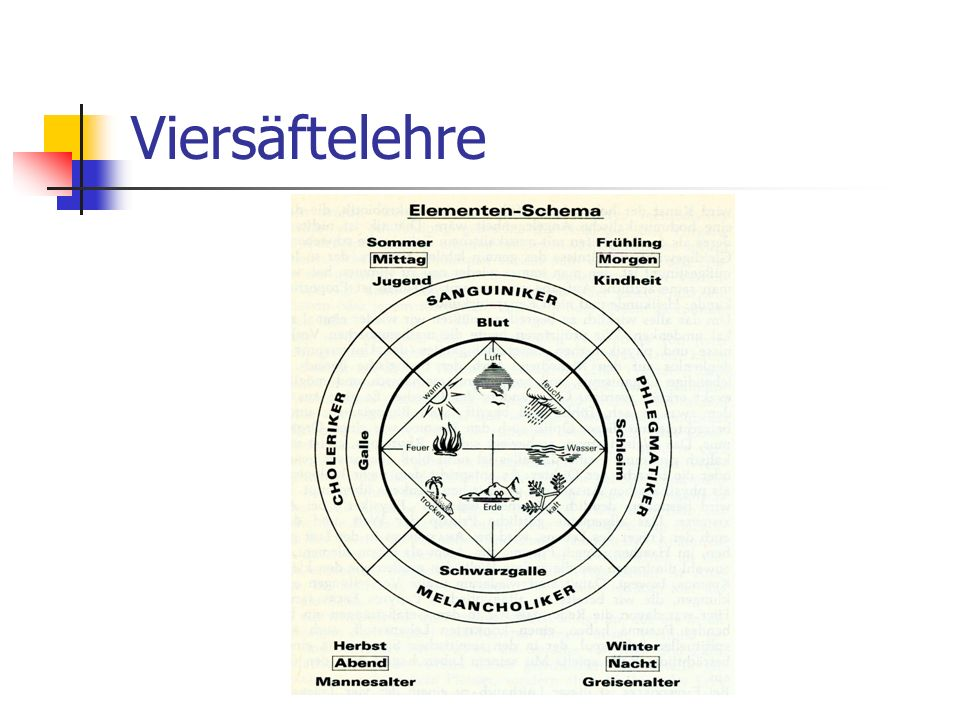 Viersäftelehre Dr. Thomas Richter