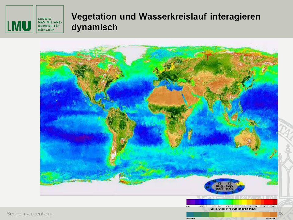 Vegetation und Wasserkreislauf interagieren dynamisch