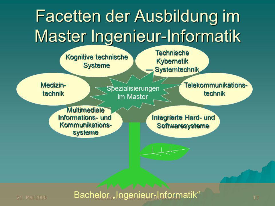 Facetten der Ausbildung im Master Ingenieur-Informatik