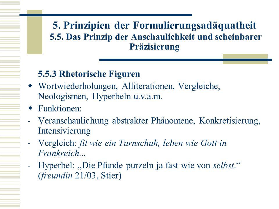 5. Prinzipien der Formulierungsadäquatheit 5. 5