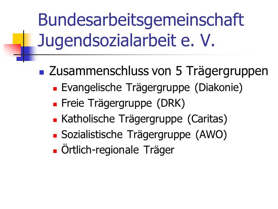 Bundesarbeitsgemeinschaft Jugendsozialarbeit e. V.