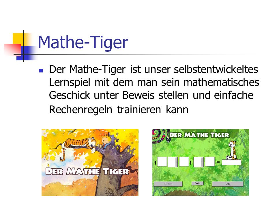 Mathe-Tiger