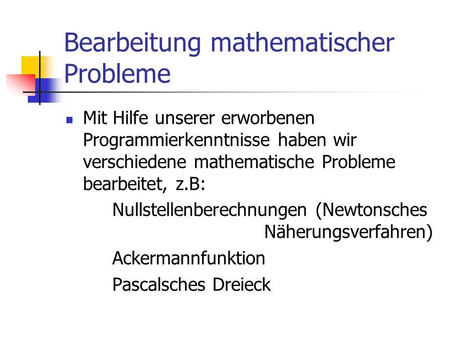 Bearbeitung mathematischer Probleme